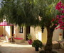 Bed and Breakfast O Tartufo Algarve Portugal